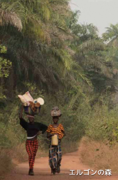 エルゴンの森を歩くケニアの人々