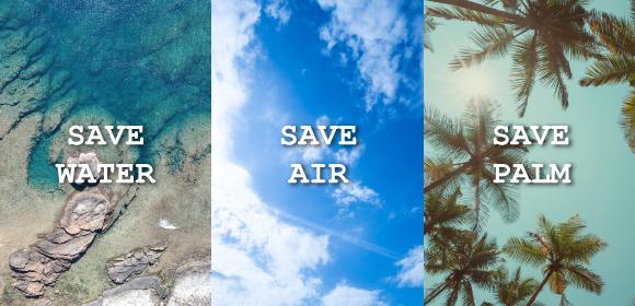 海、大気、ヤシの木